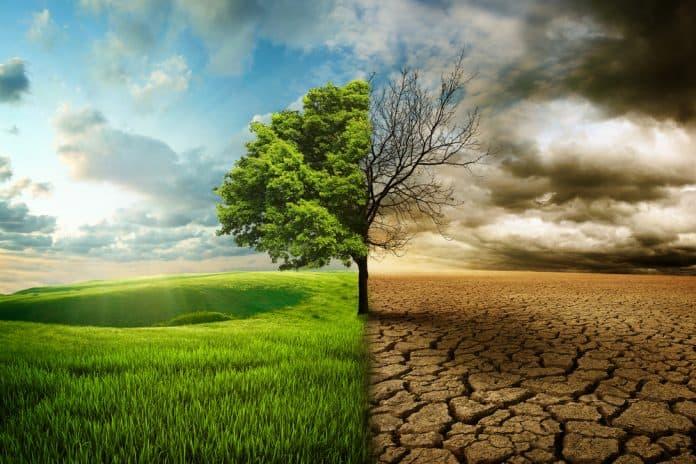 Global opvarmning er menneskeskabt